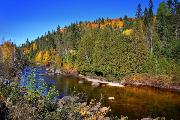 Advancing the Economics of Ecosystems and Biodiversity in Canada