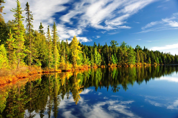 Submission to the Ontario Ministry of Natural Resources and Forestry on the Conservation Authorities Act