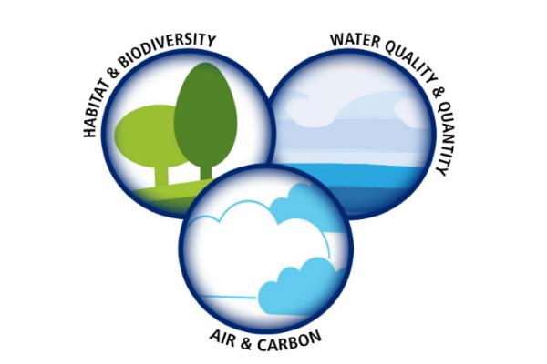 Environmental Markets 2012