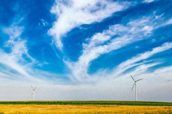 Domestic Content Requirements for Renewable Energy Manufacturing